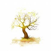autumn tree yellow leaves fall down isolated over white background vector