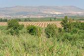 Hasbani River-israel