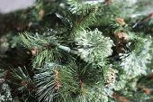 stock photo of greenery  - Fake Christmas tree greenery and lights close up - JPG