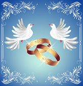 stock photo of ring-dove  - Card with wedding rings and two doves in ornament frame - JPG