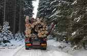 picture of logging truck  - Truck with log in road in forest in winter