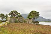 Ruins of an ancient fortress on Lough Leane Lower Lake.