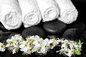 Spa Background Of Zen Stones, Blooming Twig Plum, White Towels, Closeup