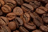 pic of spit-roast  - Macro of roasted coffee beans laying in rows with extended depth of field - JPG