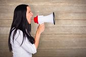 picture of outrageous  - Young woman shouting through megaphone against wooden surface with planks - JPG