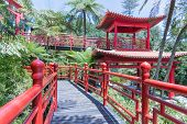 Tropical Garden With Red Japanese Style Pavilions In Funchal, Madeira