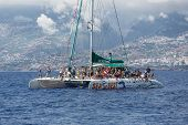 Tourists Making A Boat Trip For Whale Watching Near Madeira Island, Portugal