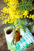 image of mimosa  - Glass cup with tea and blooming yellow mimosa with good morning note on wooden background - JPG