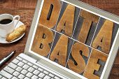 database word in wood type on a laptop screen with a cup of coffee