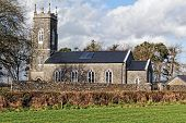 pic of century plant  - Restored 18th century church in Clomantagh Co - JPG