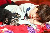 image of preteen  - preteen handsome boy and  his shepherd puppy - JPG