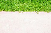 stock photo of paving  - Paving and lawn for texture and background - JPG