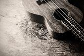 image of ukulele  - Close up of ukulele on old wood background with soft light Black and white - JPG