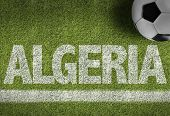 foto of algiers  - Soccer field with the text - JPG