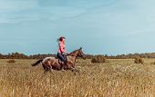 stock photo of horse girl  - Beautiful redhead girl riding horse in summer day  - JPG