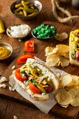 pic of wiener dog  - Homemade Chicago Style Hot Dog with Mustard Relish Tomato and Onion - JPG