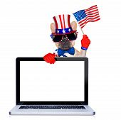 pic of bulldog  - french bulldog dog waving a flag of usa on independence day on 4th of july isolated on white background behind a blank empty computer pc screen display - JPG