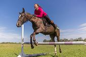 picture of horse girl  - Redhead girl on a brown horse jumping - JPG