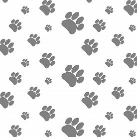 foto of dog tracks  - Seamless pattern foot print dog - JPG