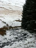 Snowy Stream2