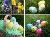 Easter Spring Collection