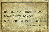 Постер, плакат: Bold Guess Newton