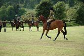 Pferde Dressur-Prüfungen im park