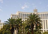 Постер, плакат: Роскошный отель за пределами пальмовых деревьев