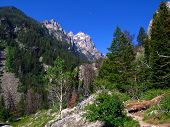 Into Cascade Canyon