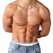Sexy Muscular Torso