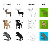 Puppy, Rodent, Rabbit And Other Animal Species.animals Set Collection Icons In Cartoon, Black, Outli poster