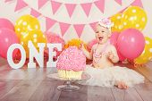 Portrait Of Cute Adorable Caucasian Baby Girl In Tutu Tulle Skirt Celebrating Her First Birthday. Ca poster