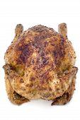 Roast Chicken On White