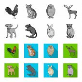 Puppy, Rodent, Rabbit And Other Animal Species.animals Set Collection Icons In Monochrome, Flat Styl poster