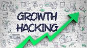Growth Hacking - Business Concept With Hand Drawn Icons Around On The Brick Wall Background. Growth  poster
