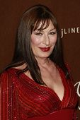 LOS ANGELES - FEB 19: Anjelica Huston at the 10th Annual Costume Designers Guild Awards held at the
