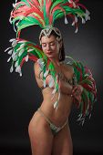 Beautiful Woman In Carnival Costume. poster