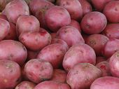 Redpotatoes121407
