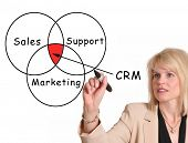 Female executive drawing Customer Relationship Management (CRM) chart