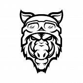 Wild Hog Or Boar Head Mascot, Colored Version. Great For Sports Logos & Team Mascots. poster