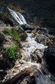Nature Rainforest River Cascade. Mountain Stream In Nature. Spring Stream In Mountain Nature. Nature poster
