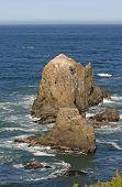 Rocky California Sea