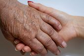 An Elderly Woman Grandmother And A Young Girl Hold Hands. Support For The Elderly From Young People  poster