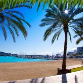 Ibiza Sant antoni de Portmany Abad beach with palm trees [ photo-illustration]