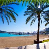Ibiza Sant antoni de Portmany Abad beach with palm trees [ photo-illustration]