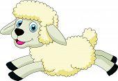 Cute sheep cartoon jumping
