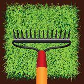 Gras Sod en tuin harken