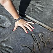 Fan Puts Hand In Handprints Of Twilight Saga Stars