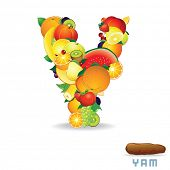 Vector Alphabet From Fruit. For Letter Y Fruit is Yum.