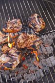image of chipotle  - Several spicy chipotle apricot BBQ chicken thighs - JPG